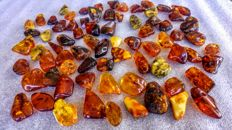 Lot of polished Old Cognac - ruby colour Baltic Amber pendants with ca. 4 mm diameter hole - 315 gm (74)