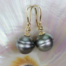 14kt gold pendant earrings with Tahitian pearls, diameter approx. 12.7mm and 2 diamonds