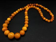 Vintage natural old Baltic Amber Necklace of dark egg yolk marble well polished colour beads, 24.2 grams