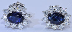 3.13 Ct Sapphire and Diamonds, rosette earrings - 18kt white gold - 20 brilliant cut diamonds – Size: 13x11 mm - NO reserve price!