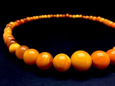 Vintage natural old Baltic Amber Necklace of dark egg yolk marble colour beads, 24.2 g