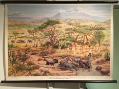 School plate in the East-African Steppe, Dr. Te Neues