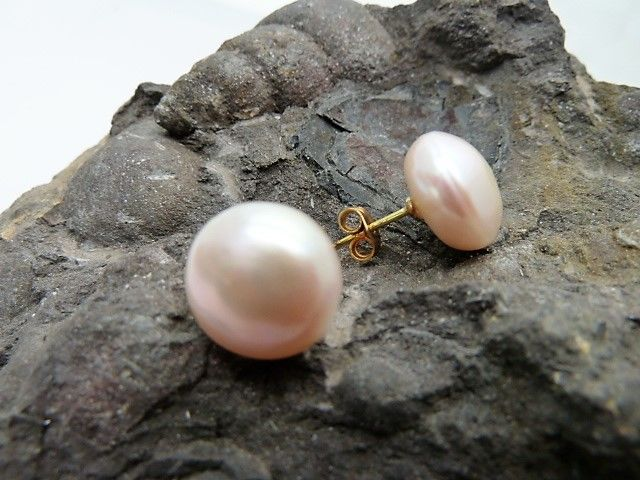 Pearl earrings in 18 kt gold No reserve