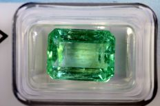 Emerald - 8.63 ct - Colombia