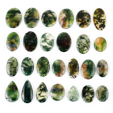 Moss Agate Gemstones lot - 451 ct (26)