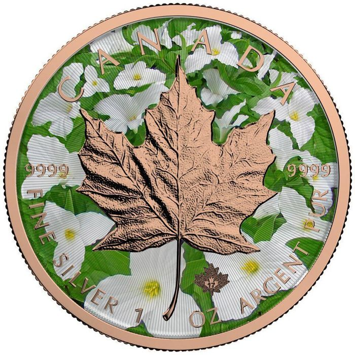 Canada - 5 Dollars 2017 'Maple Leaf - Spring' w/ rose gold - 1 oz silver