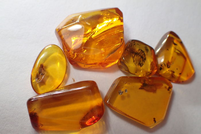 Baltic amber with insects and inclusions - 10-19 mm (6)