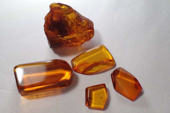Baltic amber with insects and inclusions - 10-24 mm (5)