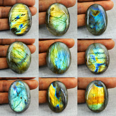 Top Flash Genuine  Labradorite Gemstones lot - 717 cts (9 pcs)