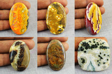 Rare  Jasper Gemstones lot - 315.50 ct (6 pcs)