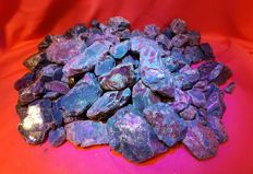 Very Large collection of Red/ Blue fluorescent amber from Indonesia - 5 Kg