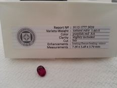 Ruby - 1.44 ct