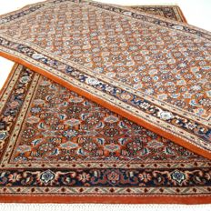 Duo Indo Bidjar Herati - 155 x 93 and 166 x 91 cm.