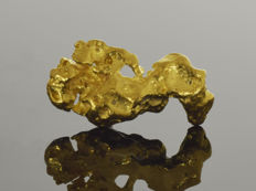 Gold nugget natural - 14.2 x 7.2 x 3.2 mm - 7.4 ct.