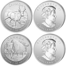 "Canada - 5 dollars 2013 ""Wildlife Antelope"" + 5 dollars 2013 ""Bison"" 2 x 1 oz of silver"