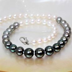Necklace 'Night & Day' - Tahiti pearls & freshwater RD diameter 7 x 10.6 mm - clasp in 925 silver