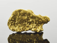 Gold nugget natural - 17.9 x 9.9 x 3.2 mm - 19.09 ct.