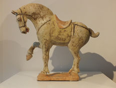 A Magnificent Painted Pottery Figure of a Prancing Horse, with Tl test - H 30 cm.