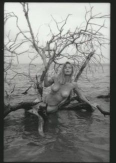 Contact sheet ; Dennis Evans - Young Girl on Tree - 1970s