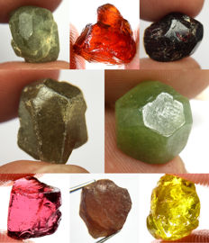 Lot of different Garnet - Demantoid, Hessonite, Andradite, Almandine, Rhodolite, Spessartite, Pyrope, Mali and Tsavorite - 55.185 ct (8)