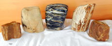 5 trunks of mineralised petrified wood - 100 - 150 mm - 9.5 kg (5)