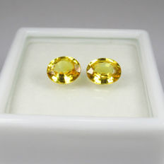Yellow Sapphire Pair - 1.53 ct - No reserve price