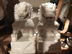 Pair of Foo Dogs in marble - China - Second half of 20th century