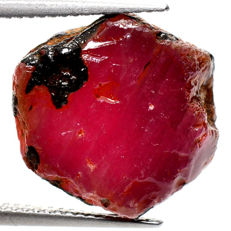 Unheated natural ruby rough specimen - 16 x 14 x 5 mm - 14,50 ct