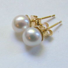 Earrings with cultured pearls  white shade colour, with 14k Yellow gold, diameter  5,mm class AAA