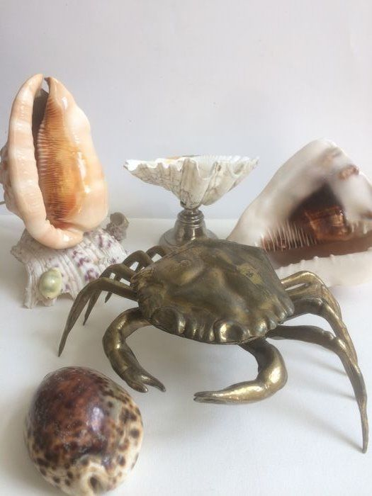 """Attractive """"beauty from the sea"""" - lot of 5 items"""