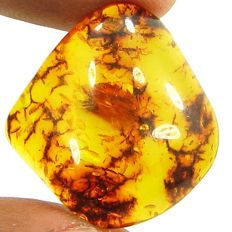 Amber  -- 26.10x 25.42x 8.70 mm - 13.77cts