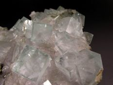 Clear sharp edged light blue green fluorite crystals with quartz. - 12x10x4 cm. - 499 gr