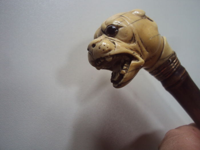 Master cane with head of bulldog - 19th century France