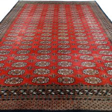 Bukhara - 371 x 275 cm - ´XXL - Persian carpet in good condition´ - With certificate