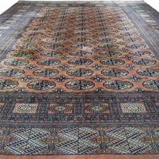 Bukhara - 295 x 243 cm - 'Wide, finely knotted Persian carpet in salmon - Rich lustre - In beautiful condition' - With certificate