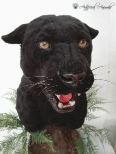 True-to-life replica Black Panther on pedestal - Panthera onca - 64cm