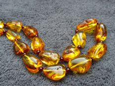 Natural Amber necklace with silver clasp, incl. certificate, 55.1 grams, not pressed, not treated