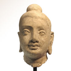 Gandhara Stucco Head of Young Buddha, 14 cm. H. without the stand - Afghanistan - ca. 3rd century A.D.