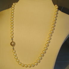 Genuine white Japanese Akoya pearl necklace with 14 kt gold clasp