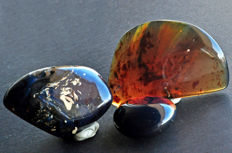 Polished Blue Amber from Indonesia - 4.3 to 8 cm - 112 gm (3)
