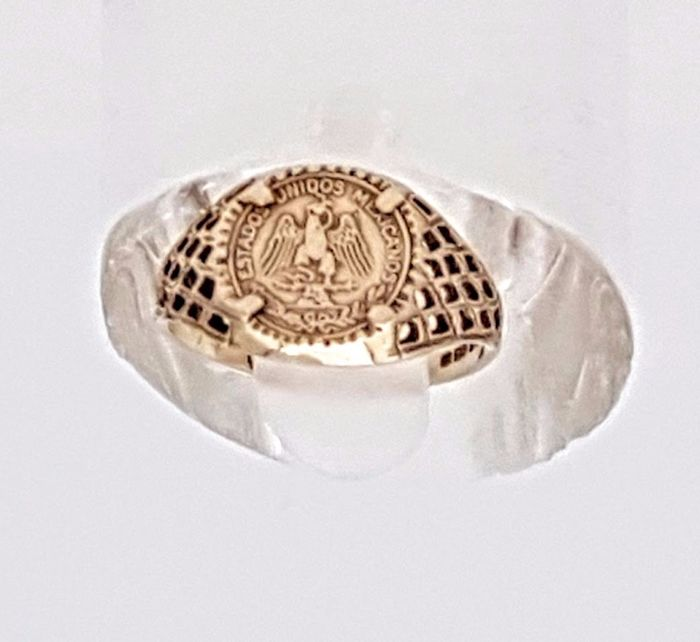 Yellow Gold Coin Collector's Ring - 1860'-S London