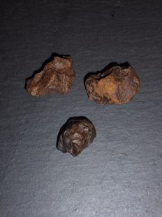 Stone Meteorite Lot - NWA - with visible Chondrules and Crust - 25, 35 and 38mm - 41.10gm  (3)