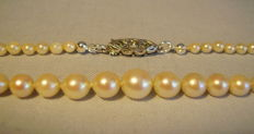 Genuine Japanese Akoya pearl necklace with Art Deco clasp