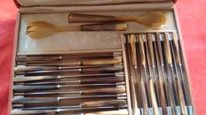 Antique set in horn and steel, antique Art Deco with fork and spoon