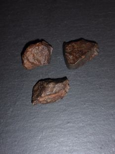 Stone Meteorite lot NWA , with visible Chondrules and Crust - 38 / 36 / 32 mm 45.6 gm  (3)