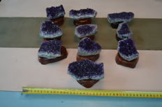Lot: 10 pieces of Amethyst on stand - 10 cm x 5 cm - 300g/piece (10)