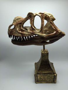 Model of a Ceratosaurus skull - 26 x 19.5 x 9 cm