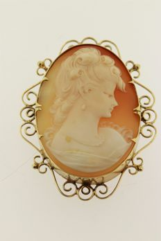 Antique brooch - shell cameo set in yellow gold border