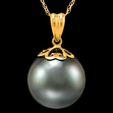 14K Pendant set with 12.4 mm Genuine Tahitian Pearl