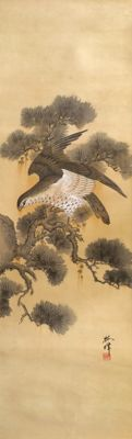 "Old impressive hand-painted scroll painting - 'Hawk on Pine' - signed and sealed ""Baijo"" 梅城 - Japan - ca. 1900"